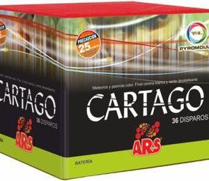 CARTAGO (36)